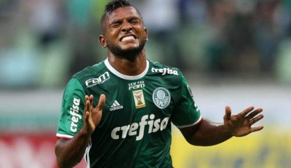 Palmeiras5