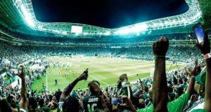 Palmeiras4