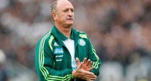 Palmeiras10