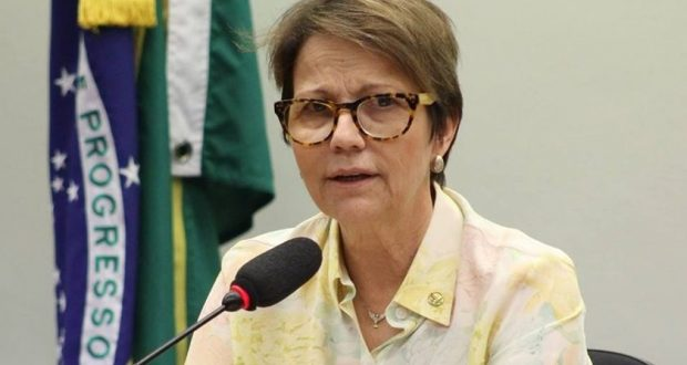 TeresaCristina