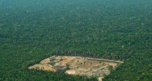 Desmatamento2